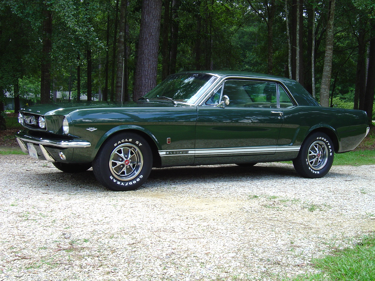 1964 Ford Mustang Fastback Car Autos Gallery Hd Pictures
